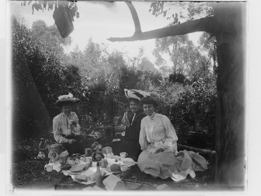 picnic scenes 3